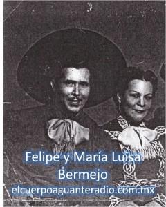 felipe y maria luisda bermejo sello