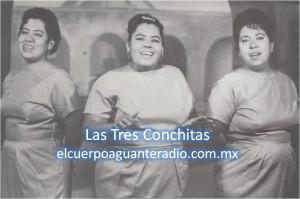 las tres conchitas-sello