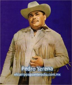 pedro-yerena-sello