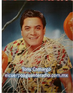tony camargo-sello