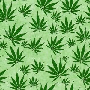 marihuanita